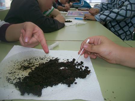 componentes del suelo y